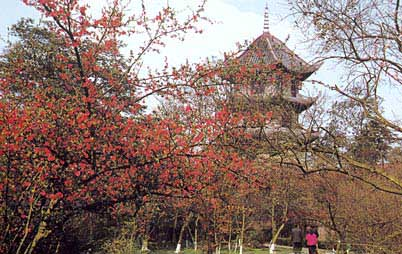 Thatched Cottage of Du Fu:  Sichuan - Chengdu;  Travel in Chengdu, Sichuan